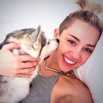Miley-Cyrus-Floyd