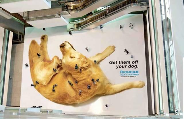 Accion-BTL-Perro-con-pulgas-en-centro-comercial